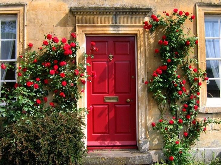Frente de casa con rosa roja