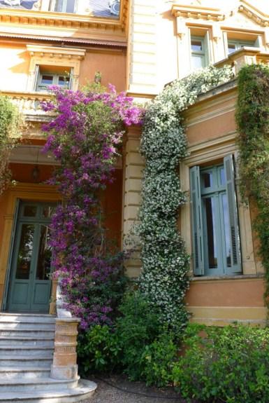 Fachadas de casas con enredaderas for Fachadas con plantas trepadoras