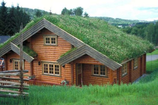 fachadas de casas de montaña con troncos